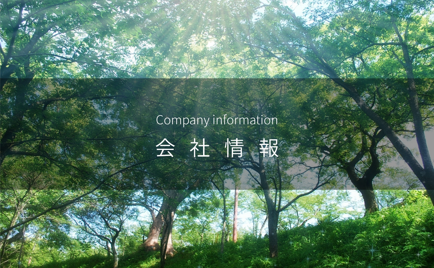 header_company_information
